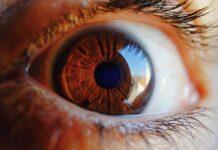 5 områder hvor kunstig intelligens sniger sig ubemærket ind i dit liv